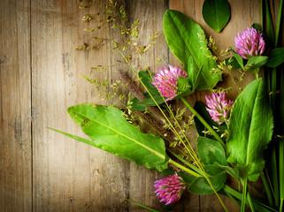 Herbs over Wood. Herbal Medicine. Herbal Background