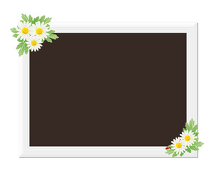 picture frame with daisies
