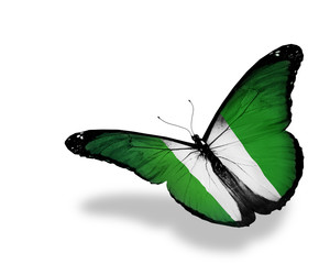 Nigeria flag butterfly flying, isolated on white background
