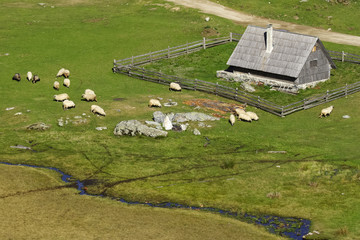 The mountain village, Vranica