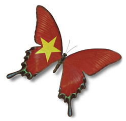 Vietnam flag on butterfly