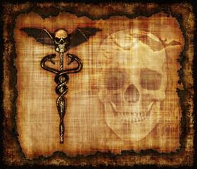 Skulls, Sankes and Bat Parchment
