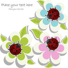 Beautiful card with ladybugs on flowers