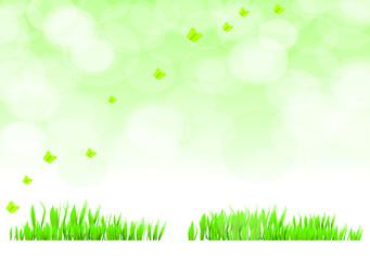 background gras grün schmetterling