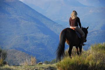 Papiers peints Equitation Promenade à cheval
