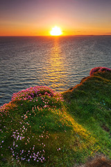 Fototapete - Cliffs of Moher at sunset in Co. Clare, Ireland