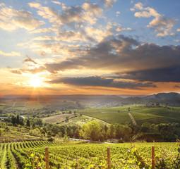 Fototapete - Chianti vineyard landscape in Tuscany, Italy
