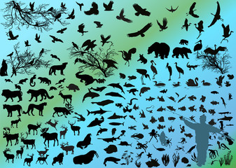 different animals silhouettes on light background