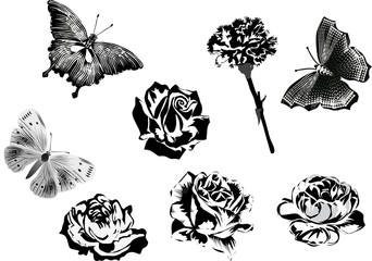 set of black flowers and butterflies