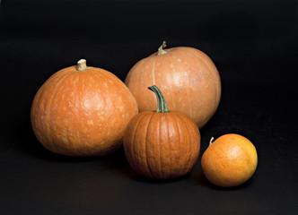 Set of pumpkins on black.