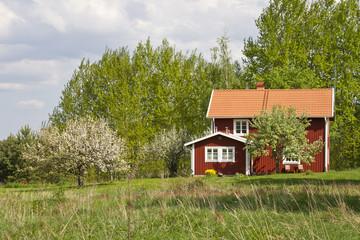Idyllic summer house in Sweden