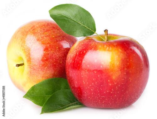 denies apples plea -