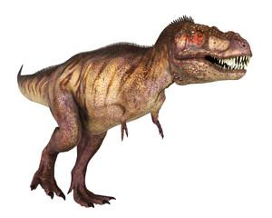tyranosaur red face walking