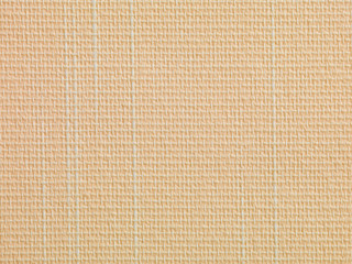 beige texture with white lines abstact