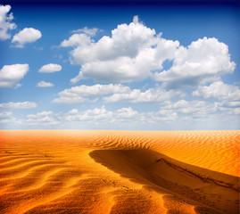 Printed roller blinds Desert desert landscape