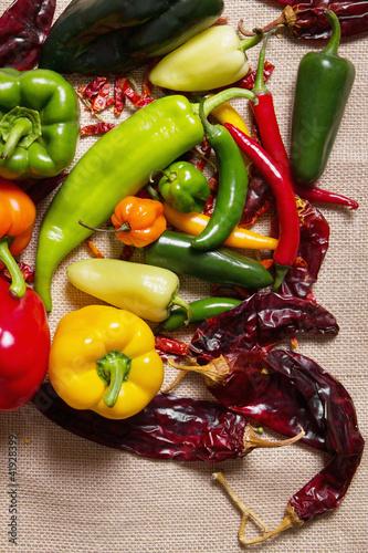 Wall mural Chilli pepper still life