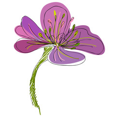 illustrated cute flower for your spring design