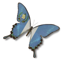 Guatemala flag on butterfly