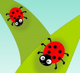Two cute ladybugs on green leafs.