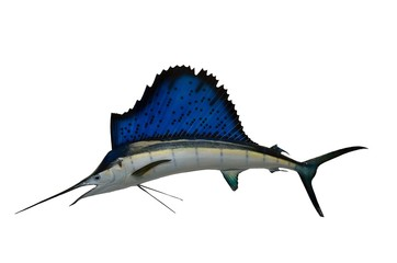 Sailfish Mount