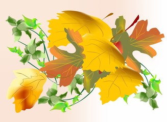 Fototapeta jesienna impresja obraz