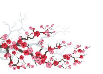 branch_sakura-03