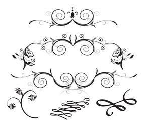Decorative Floral Design Elements vector design