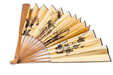 Chinese folding fan isolated