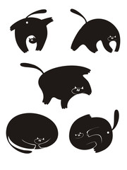 Vector cat silhouette collection for design