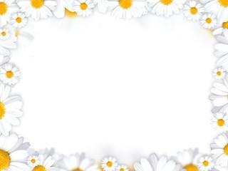 daisy flowers frame background