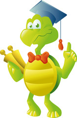 turtle teacher