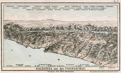 Map of Palestine. The Bible. Germany, 1895
