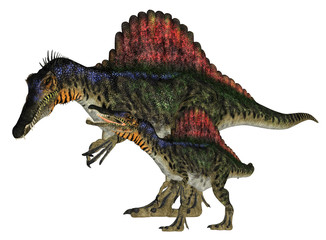 Adult and Young Spinosaurus