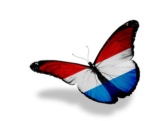 Luxembourg flag butterfly flying, isolated on white background
