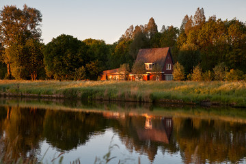 Fototapete - morning on Dutch farm