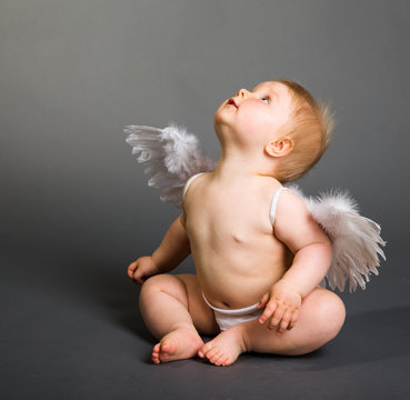 Infant baby with angel wings on neutral background