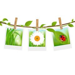 Summer Photos With Clothespins