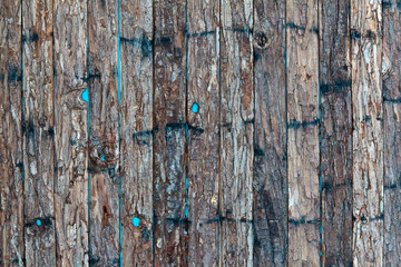 Small strokes of bark on a blue background