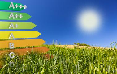 Label of EU efficiency Class definition on a cornfield
