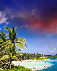 Cloudy Sky above Nassau Vegetation, Bahamas