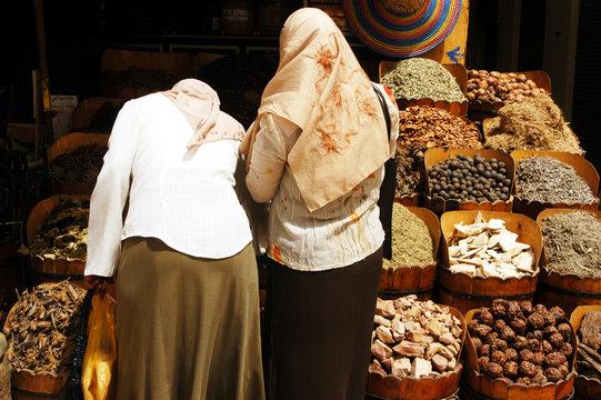 Aswan Cityscape