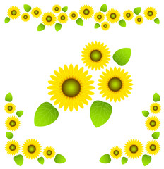 Sunflower - line,corner