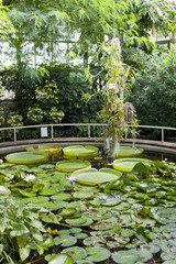 Botanical Garden Na Slupi, Prague, Czech Republic