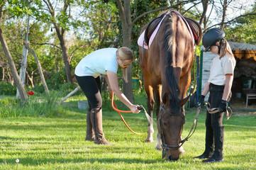 girl sprays horse