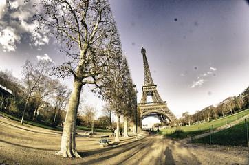 Fototapete - Colors of Eiffel Tower in Winter