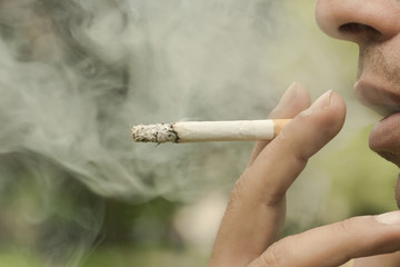 Garden Poster Smoke stop smoking