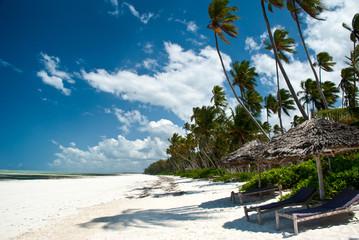 Poster Zanzibar Trobical beach in Zanzibar