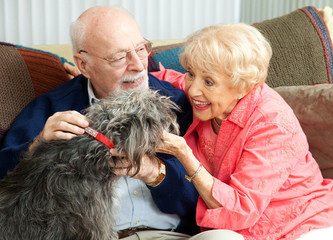 Seniors at Home with Their Dog
