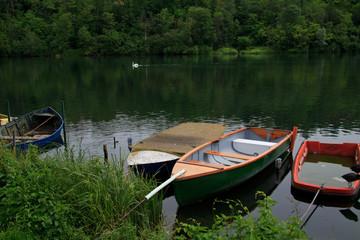 barche sul fiume Adda. Sullo sfondo un cigno reale