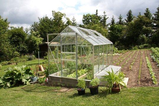 Serre jardin vert terre cultiver cultivateur